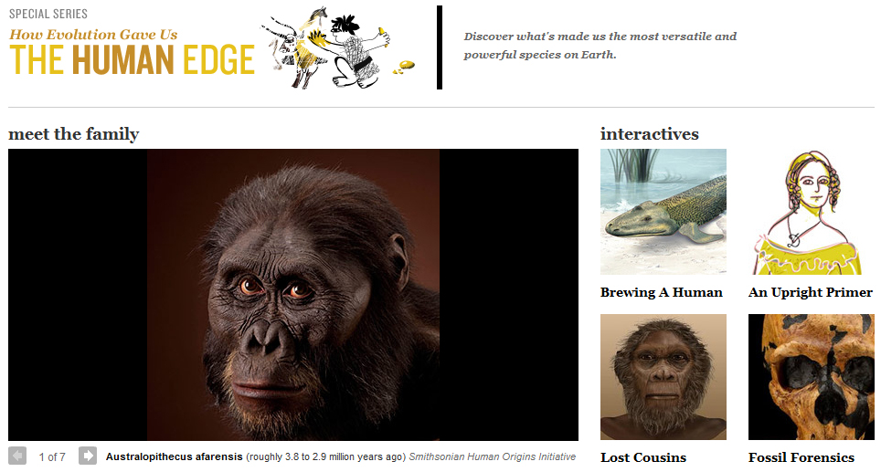 a prespective on the evolution of In short, evolutionary psychology is focused on how evolution has shaped the mind and behavior though applicable to any organism with a nervous system, most research in evolutionary psychology .